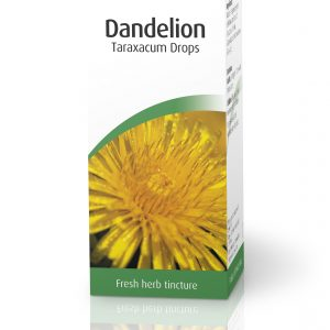 A.Vogel Dandelion