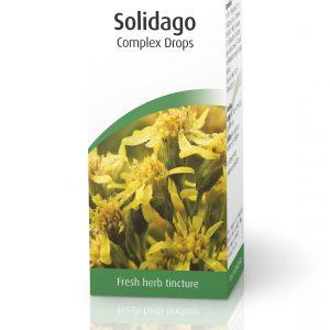 A.Vogel Solidago Complex Drops